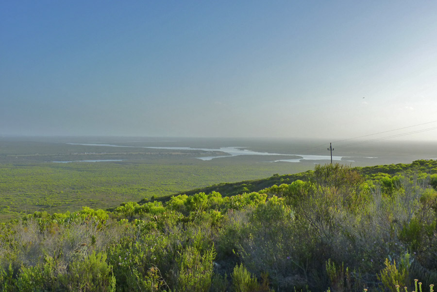 Why did it take us so long to visit here?... Vlei, veld and sea at De Hoop.