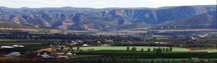 Patensie in the Gamtoos Valley, eastern gateway to the Baviaanskloof World Heritage Site
