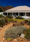 Cedar Guesthouse