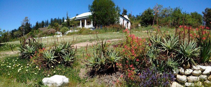 Main homestead