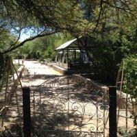 Dennehof Consevatory in the Garden