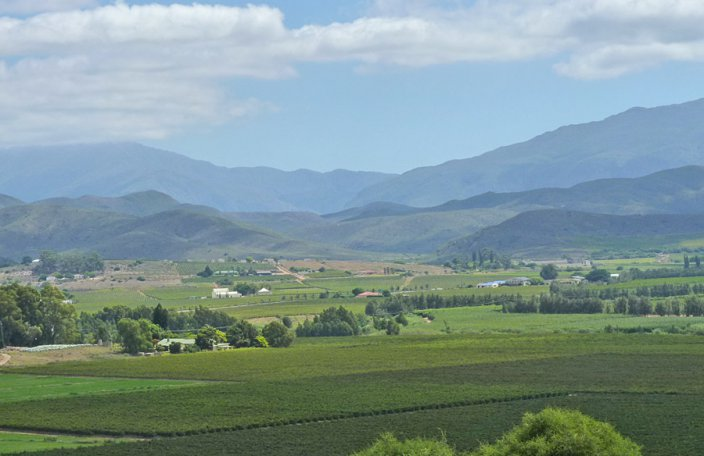 Bonnievale... a beautiful valley or vines & fruit