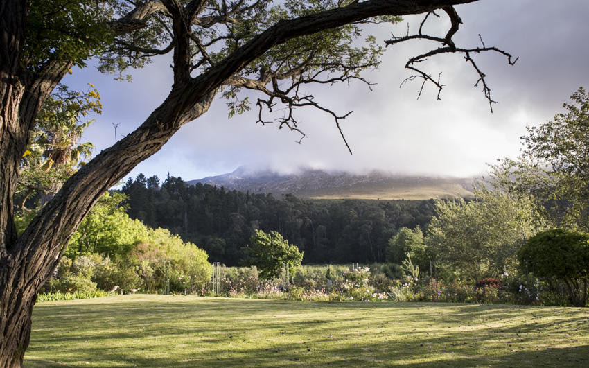 Wildekrans Country House_Houw Hoek Valley_Elgin Valley_luxury guest house accommodation_Indigenous and rose garden