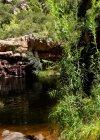Kleinrivier Wilderness