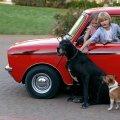 Kids enjoying the mini