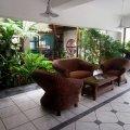 Chairs and indoor garden