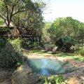 Caracal Lodge swimming pool
