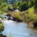 Otters Den Lions River