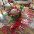 Fresh Flowers to make you feel at home
