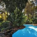 4 oasis  16  06  2015_garden pan 1 RESIZE 3