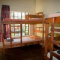 6 Bed dorm ( shared bathroom) R200 per person