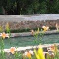 Hillside swimming pool 1