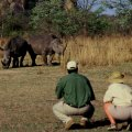Tracking rhino in the Whovi National Park, which is an intensive protection zone for the rhino