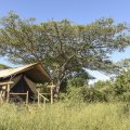 Zululand Lodge South Africa Hluhluwe room 4834.jpg