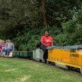 Redberry Express Mini Train