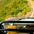 Stunning game drives