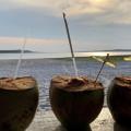 boa-vista-bilene-accommodation-drinks-food
