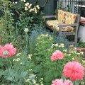 a comfy bench in the garden