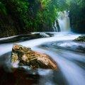 Disa waterfall at Botanic Gardens