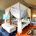 Luxury-tented-accommodation