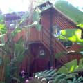 Tree House 6 Sleeper