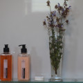 Guest Amenities provided - only eco-friendly products used and for cleaning too.