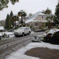 Snow July 2011