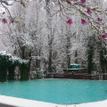 Pool with Snow 2017