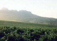 Annandale Wine Estate
