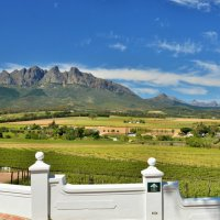 Val du Charron Wine and Olive Guesthouse
