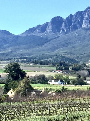 Wellington Country house in the Cape winelands