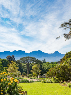 La Felicita Gardens