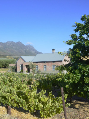 Vineyard Views Country House