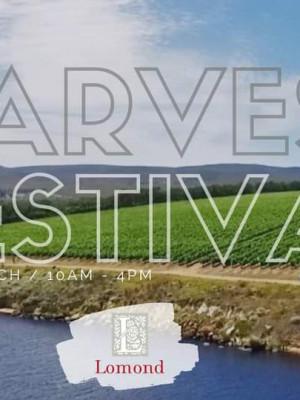 Harvest fest 20-03