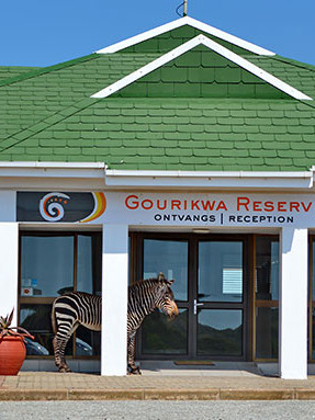 Gourikwa---Reception