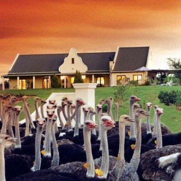 Mooiplaas Guest House & Spa