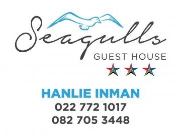 Seagulls new logo details.jpg