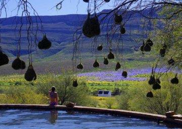 Enjo Nature Guestfarm