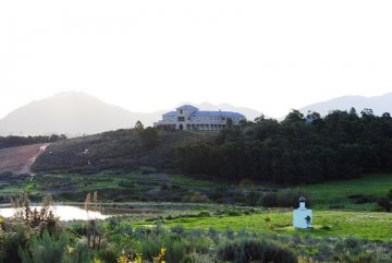 Guinevere Guest Farm